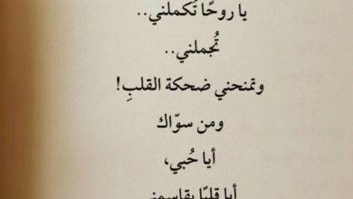 كلمات حب روعة