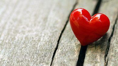 قلب احمر جميل
