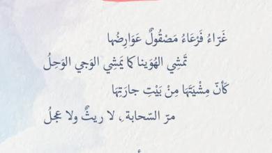 أجمل ما قاله الأعشى في الغزل والشوق
