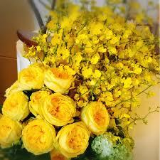 كلمات عن الورد الأصفر وجمال الطبيعة سبحان الخالق