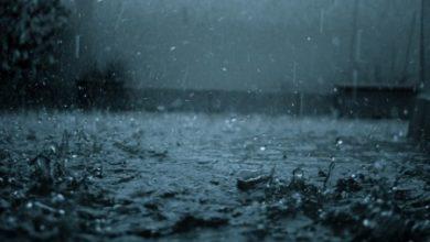 كلام عن حب المطر
