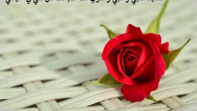 كلمات حب وعشق