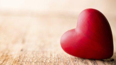 امثال حب