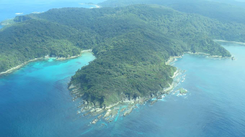 جزيرة فاروس