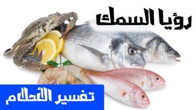 رؤيا السمك