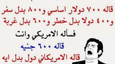 الموظف المصري والموظف الأمريكي