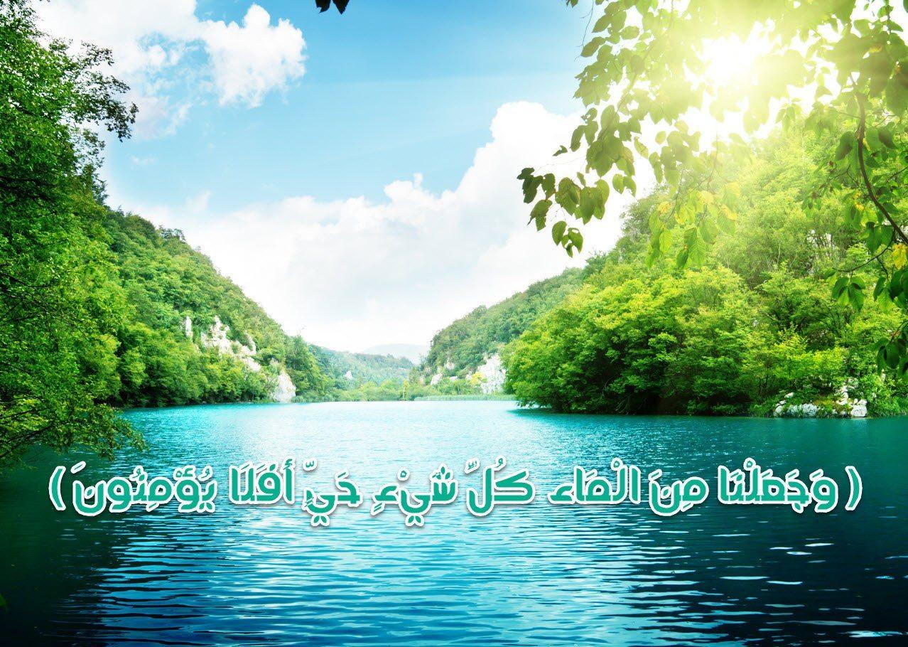 آية قرآنية تظهر أهمية الماء