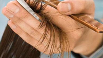 طريقة تغذية الشعر