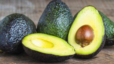فوائد فاكهة الافوكادو