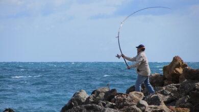 كيفية صيد السمك