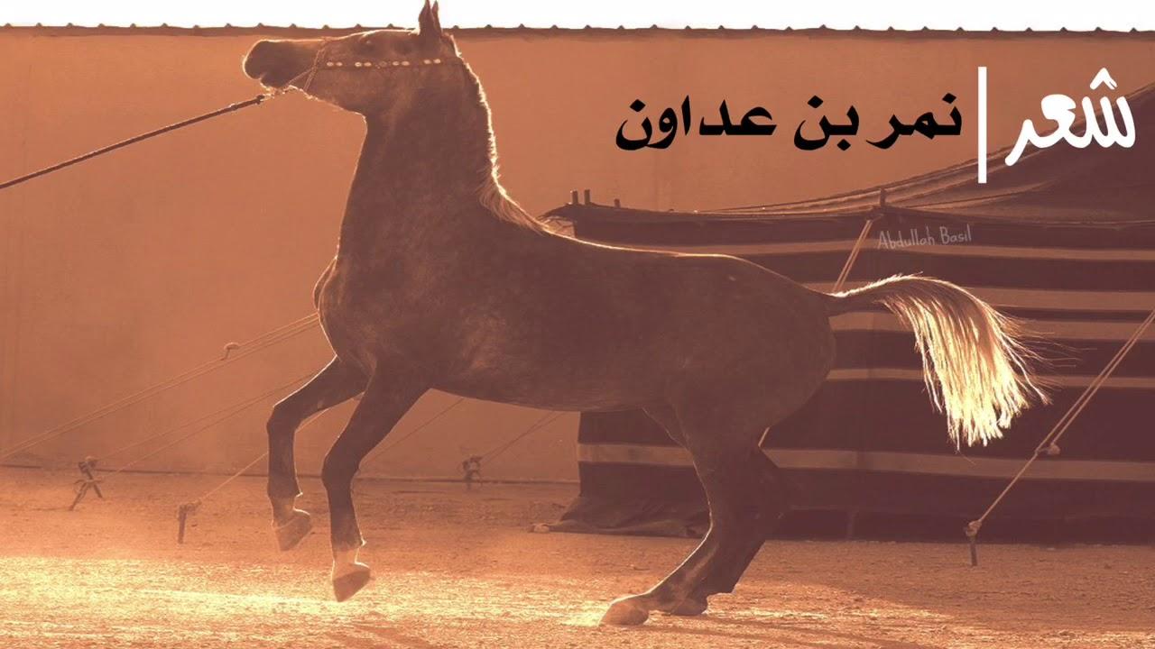 شعر نمر بن عدوان