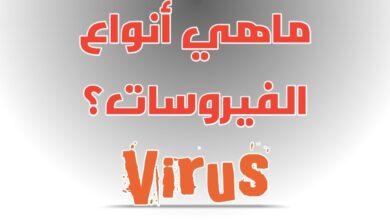 ما هي أنواع الفيروسات