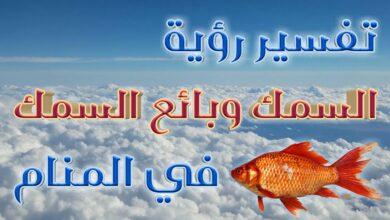 تفسير رؤية السمك