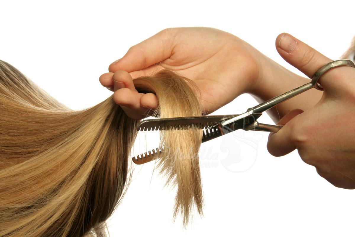 تقصير الشعر