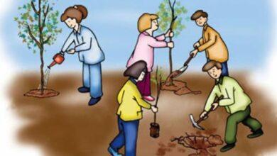 تعاون في نظافة البيئة