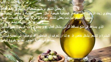 فوائد زيت الزيتون للشعر الخفيف