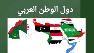 دول الوطن العربي