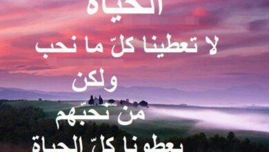 كلمات عن الحياة.