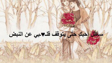 احلى كلام رومانسي