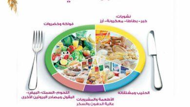 الطبق الصحي