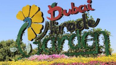 أجمل الحدائق في الإمارات