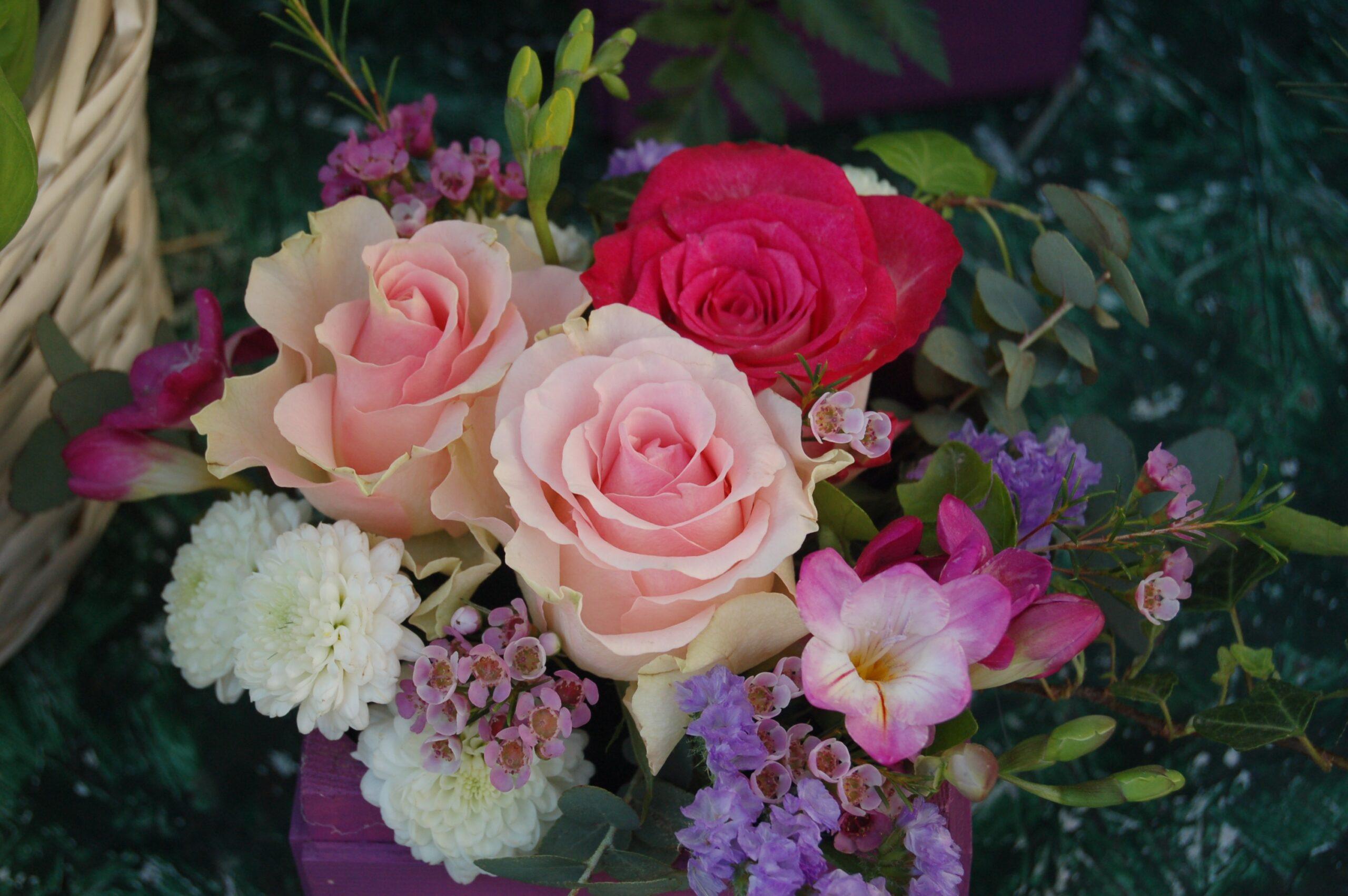 الورد بألوانه في المنام