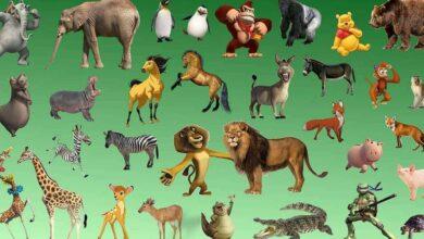 الغاز عالم الحيوان