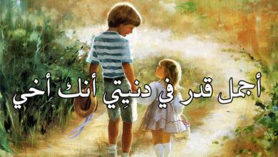كلام عن حب الأخ