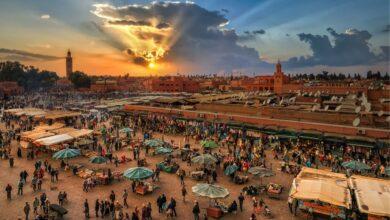 معلومات عن مدينة مراكش