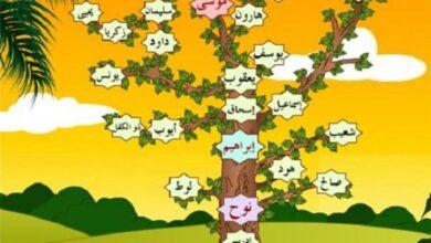 شجرة الأنبياء.