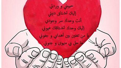 شعر عن الحب الجميل