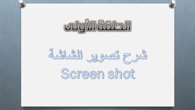 تصوير الشاشة.