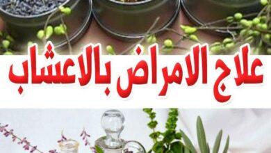 علاج الأمراض بالأعشاب