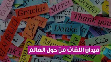 ميدان اللغة