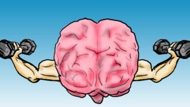 طرق تقوية الذاكرة