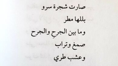 قصيدة مكتوبة عن المرأة.