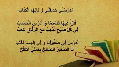 قصيدة عن المدرسة