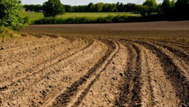 تخطيط التربة