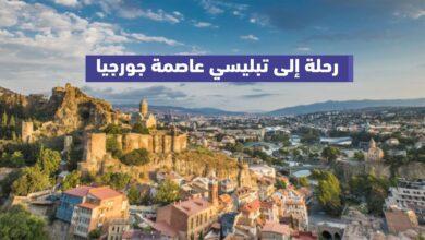 رحلة إلى تبليسي