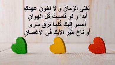 خواطر حب عراقية