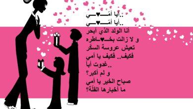 كلمات قصيدة عن الأم.