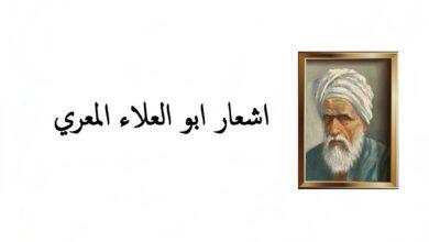 اشعار ابو العلاء المعري