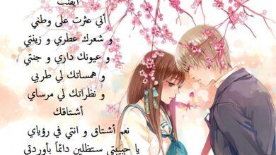أجمل ما قاله الشعراء في الحب و الرومانسية.