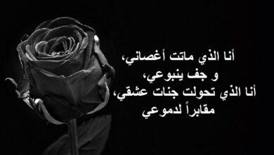 أروع ما قيل عن الحب الحزين و الفراق.