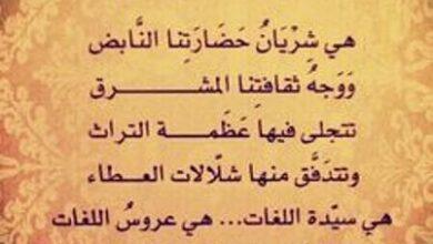 فخامة اللغة-العربية