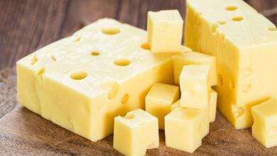 معلومات عن الجبن الرومي