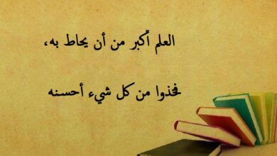 صورة مرسوم عليها كتب و مكتوب لافتة عن العلم.