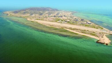 جزيرة زركوه