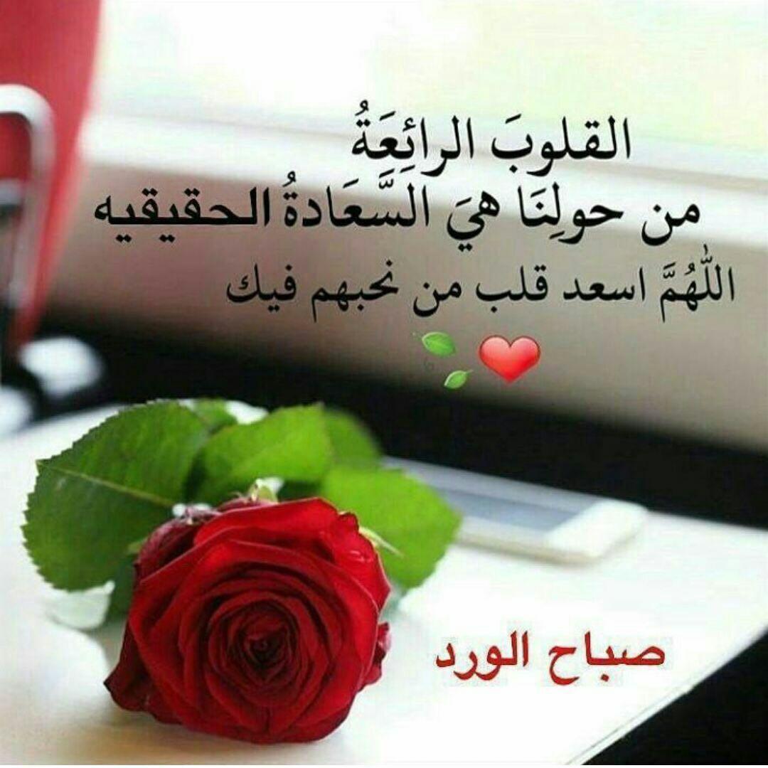 صورة وردة حمراء و مكتوب رسائل صباحية جميلة.